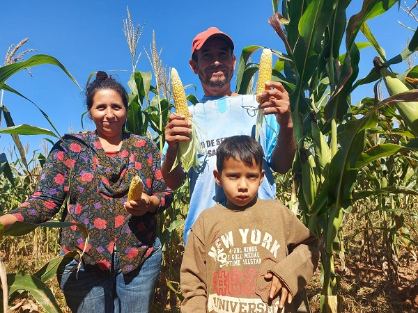 Paraguay experimenta notable crecimiento del sector agropecuario