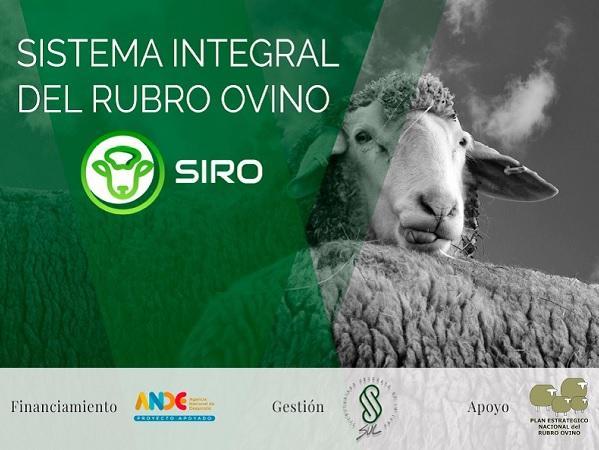 SUL presentó el Sistema Integral del Rubro Ovino