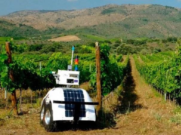 Robot para el cultivo de la vid