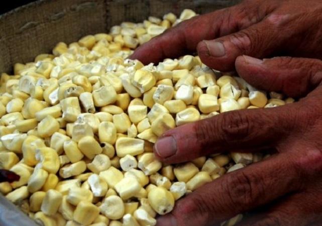 En junio, el índice de alimentos de la FAO bajó por primera vez en 12 meses