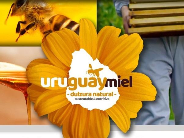Hoy cierra el proyecto sobre fortalecimiento de la capacidad exportadora apícola