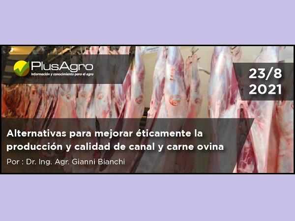 Curso: Alternativas para mejorar éticamente la producción y calidad de canal y carne ovina