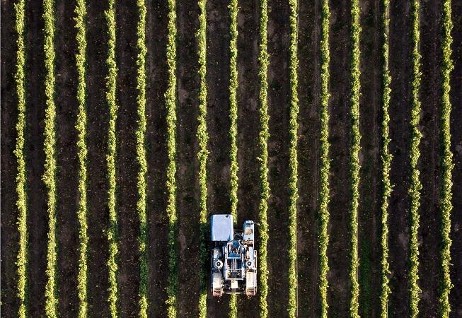 Convocan a productores a participar del piloto sobre seguros agrícolas