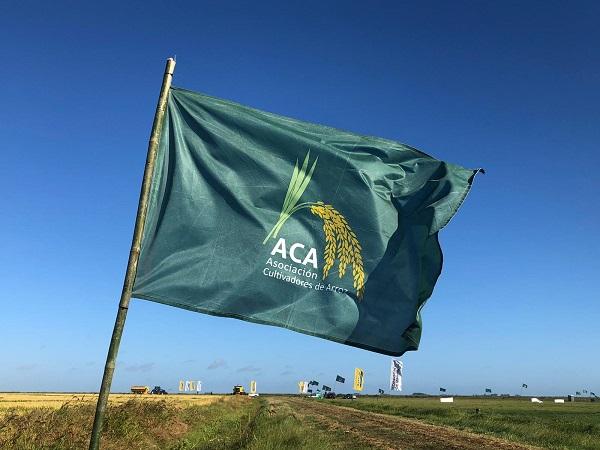 Arroceros apoyan la derogación de la obligatoriedad de la mezcla de biodiesel en el gasoil