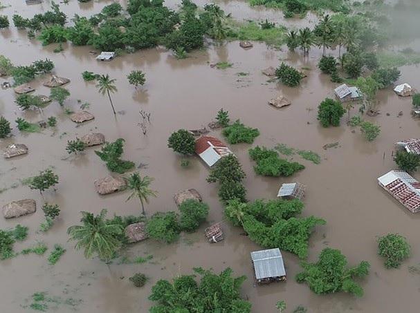 Las inundaciones en China reviven temores por nuevos brotes sanitarios en cerdos