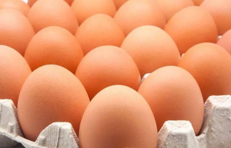 Cualidades únicas de los huevos benefician a consumidores de todas las edades, incluso niños