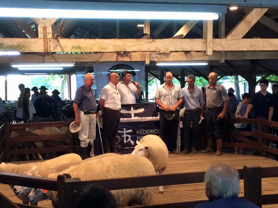 Los carneros de van vendiendo