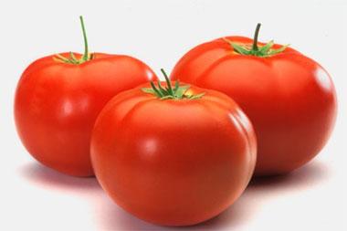 Desarrollan tomates transgénicos que previenen enfermedades cardiovasculares